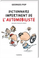 Dictionnaire impertinent de l'automobiliste