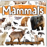 Mammals: Discover A Wide Variety Of Mammals For Kids!