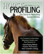 Horse Profiling: The Secret to Motivating Equine Athletes