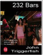 232 Bars:  A Novel About Scuba, Ladyboys, and Living the Dream