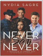 Never Say Never: A Triangle of Three Men the Third Book In a Trilogy