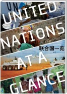 United Nations at a Glance (Chinese language)